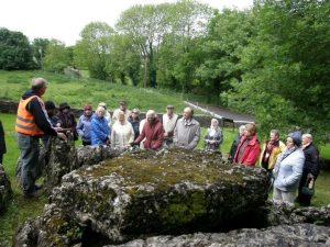 Wedge Tomb Lough Gur Kilmallock Visit
